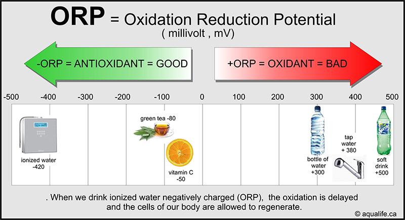 Sự khác nhau giữa pH và ORP